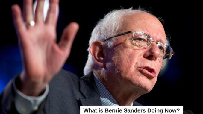 What is Bernie Sanders Doing Now