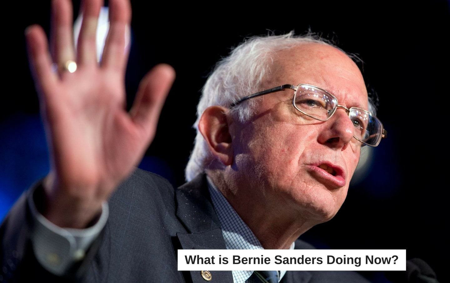 What Is Bernie Sanders Doing Now?